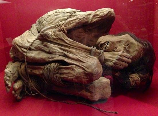 Wellcome Collection: mummy