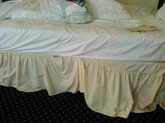 Britannia Hotel - Aberdeen: dirty/ damaged bedding upon my ARRIVAL.