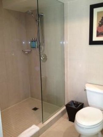Shelburne NYC–an Affinia hotel: Our bathroom in this room was a tiled walk-in shower. Room 1510