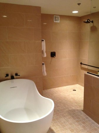 Hilton Dallas Park Cities: Bathroom - Presidential Suite