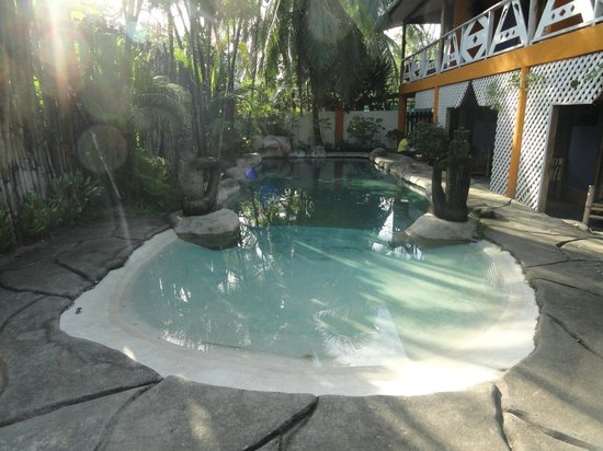 Cariblue Beach & Jungle Resort: Pool