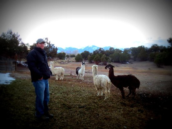 Mountain Goat Lodge: Eric out in the pasture.