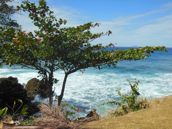 El Faro Park : A walk with a view