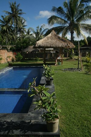 Heavenly Homestay: The pool and gazebo seen from the rooms.