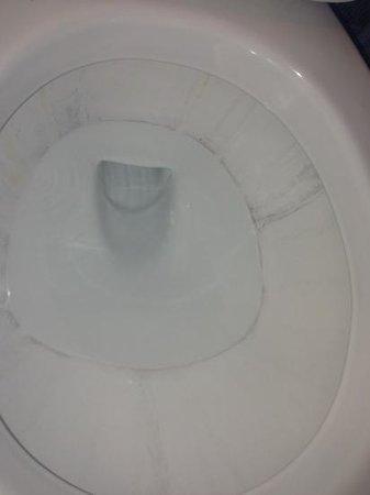 Crowne Plaza Sacramento: toilet in room