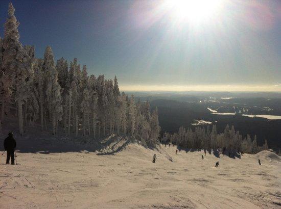 Lodge de la Montagne: Ski magnifique decor