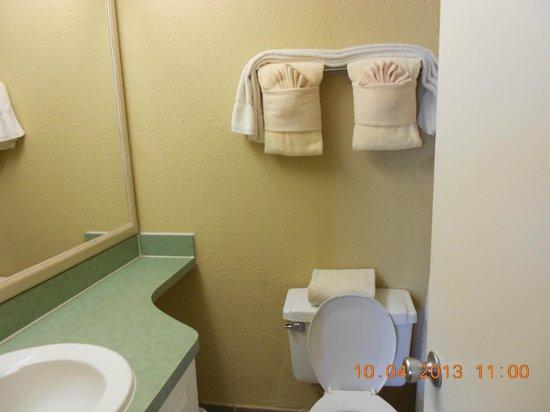 The Enclave Hotel & Suites: Twin Room Bathroom
