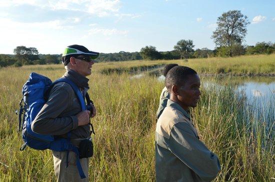 Leopard Lodge : walking safari kafue np