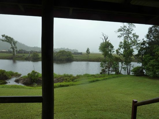 Henderson Park Farm Retreat: view from cabin