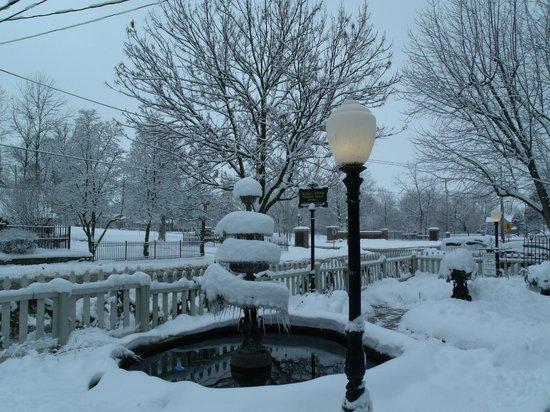 Ashley-Drake Historic Inn and Gardens: Winter in the Garden