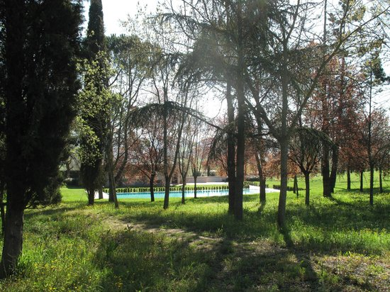 Il Palagio: Garden and pool