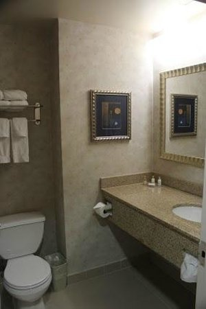 Marco LaGuardia Hotel by Lexington: Small but clean bathroom