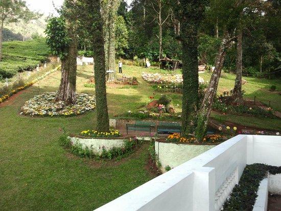 Oak Fields: Garden Area