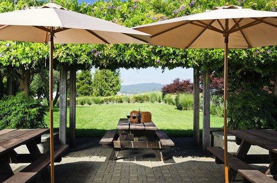 Rodney Strong Vineyards : Picnic outside the Tasting Room