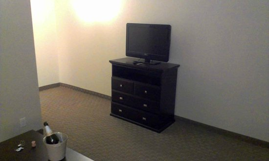 Holiday Inn Express Hotel & Suites Ottawa Airport : Tiny TV