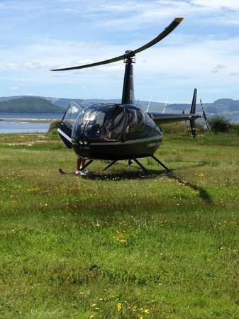 Ngongotaha Lakeside Lodge: Taking off from the backyard of the lodge!