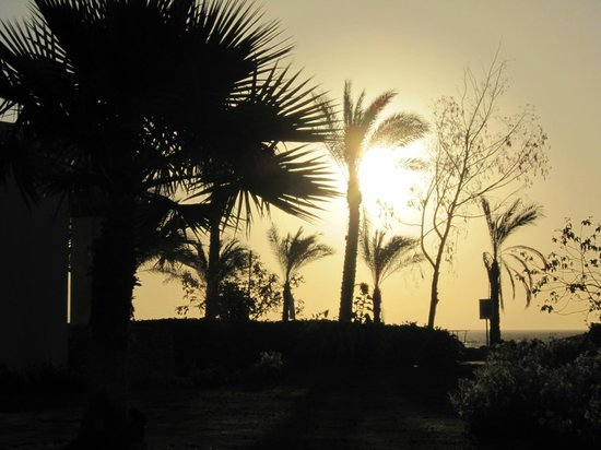 Sunrise Diamond Beach Resort: The veiw from our bedroom window