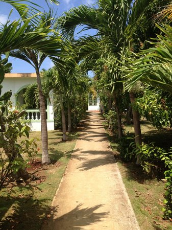 Hidden Paradise Resort Hotel: walk through