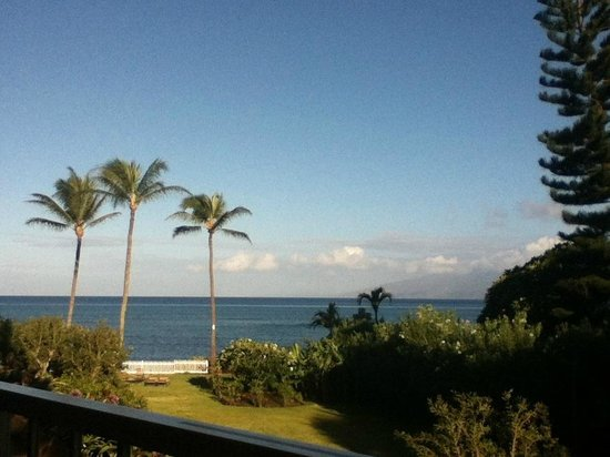 Royal Kahana: Our garden view room's actual view!