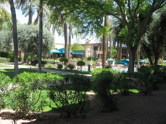 DoubleTree Resort by Hilton Paradise Valley - Scottsdale: Patio view