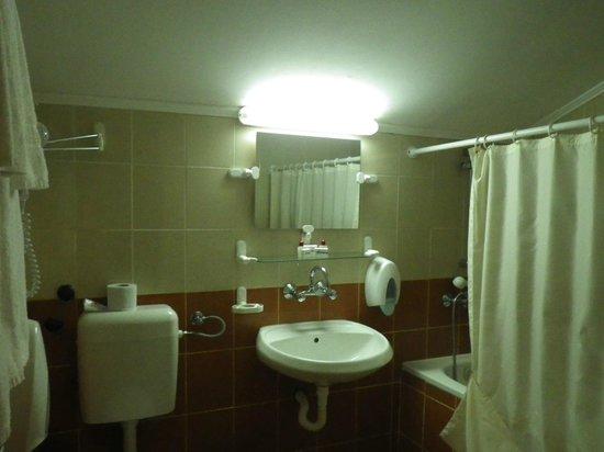 Snejanka Hotel: Apartment bathroom