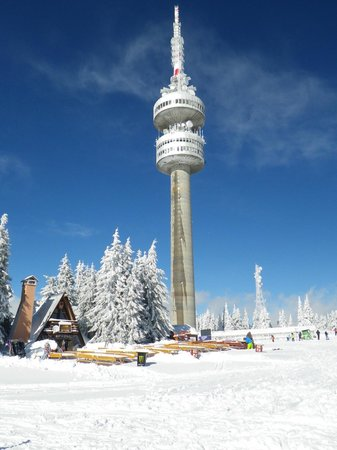 Snejanka Hotel: Tower