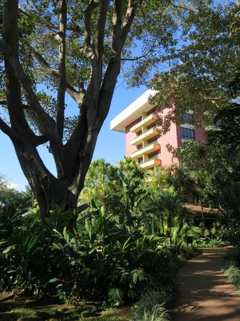 Barcelo San Jose: Hotel view from the grounds.