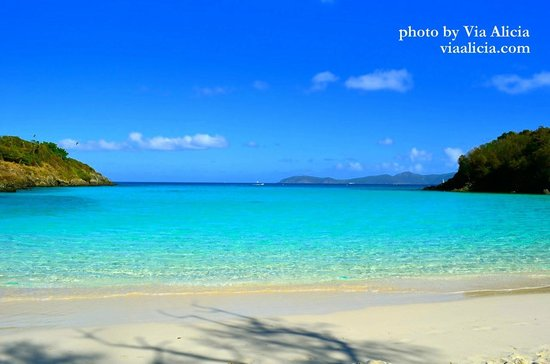 Trunk Bay Gorgeous Beach With Crystal Clear Water