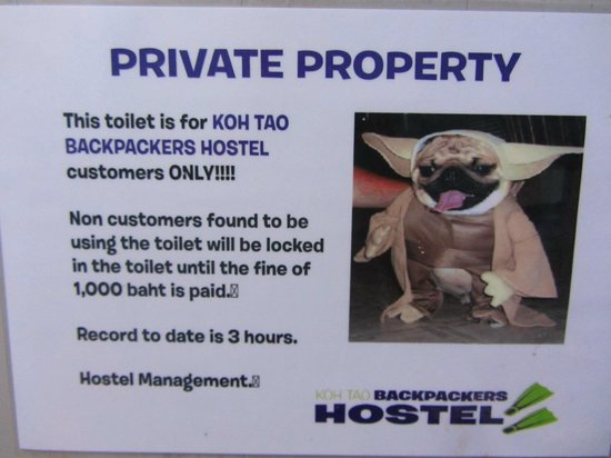 Koh Tao Backpackers Hostel : strict rules...