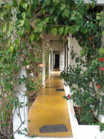 Hotel Hibiscus Garden: Zu den Zimmern