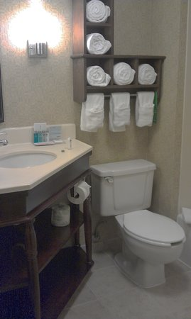 Hampton Inn Birmingham / Mountain Brook : Bathroom