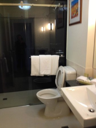 Radisson on Flagstaff Gardens: Bathroom, huge rain shower