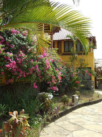 Hacienda Puerta Del Cielo Eco Spa: gorgeous flora and fauna everywhere