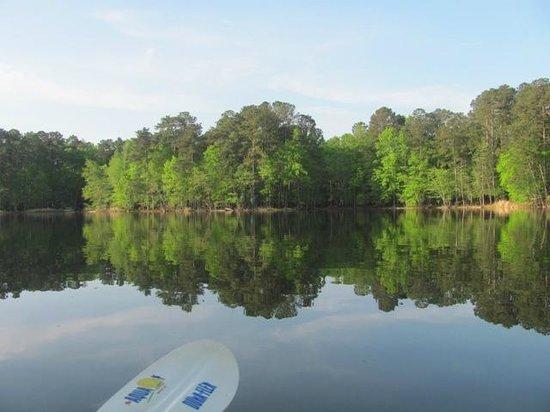 Lake Wateree State Park : Beautiful Lake Wateree