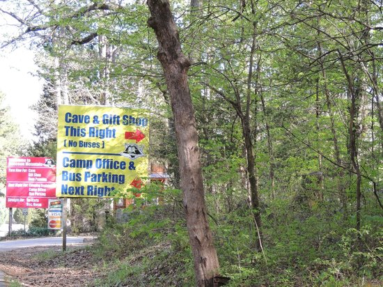 Raccoon Mountain RV Park and Campground: activities sign
