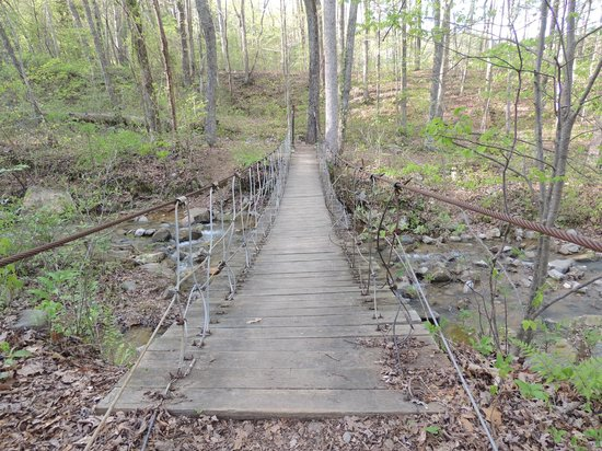 Swinging Bridge Picture Of Raccoon Mountain Rv Park And