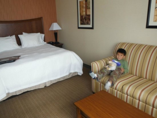 Hampton Inn & Suites Folsom : The King bed room