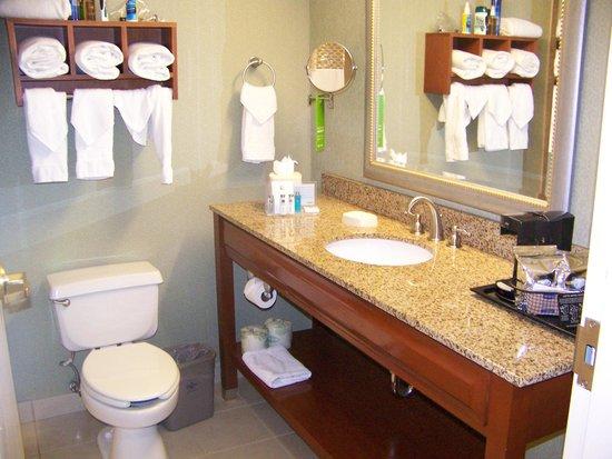 Hampton By Hilton Miami-Coconut Grove/Coral Gables: ..Vista de la entrada del baño..