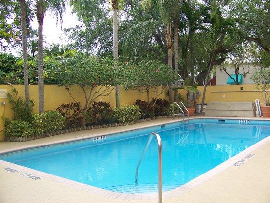 Hampton By Hilton Miami-Coconut Grove/Coral Gables: ..Picina...