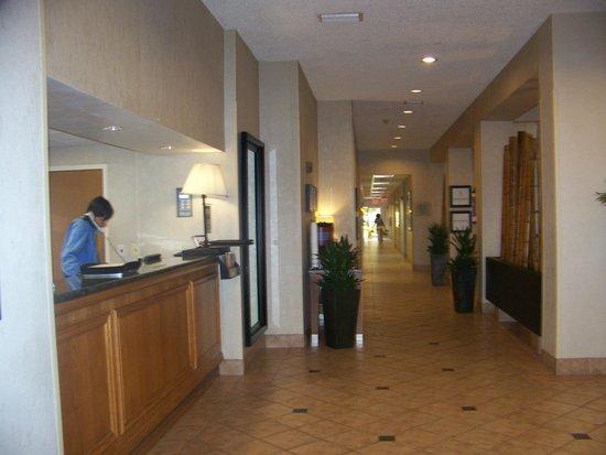 Hampton By Hilton Miami-Coconut Grove/Coral Gables: .. La recepcion...