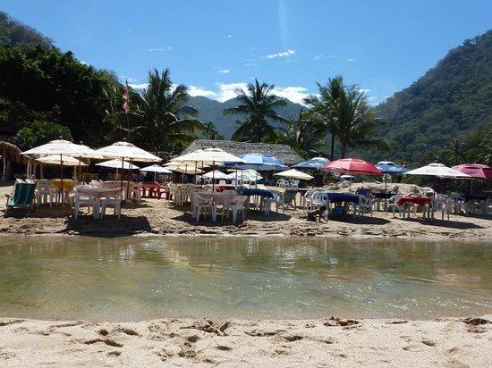Casa de Piedra: Beachside Restaurants at Boca