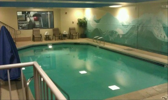 Hampton Inn San Francisco - Daly City: Indoor Pool