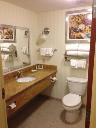 Comfort Suites Hummelstown-Hershey: Bathroom Area (in suite)