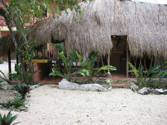 Dos Ojos Lodge: Thatched-roof kitchen/common-area.
