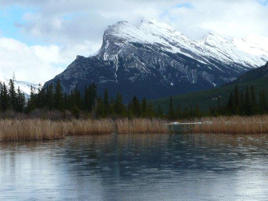 Vermilion Lakes: April 2013