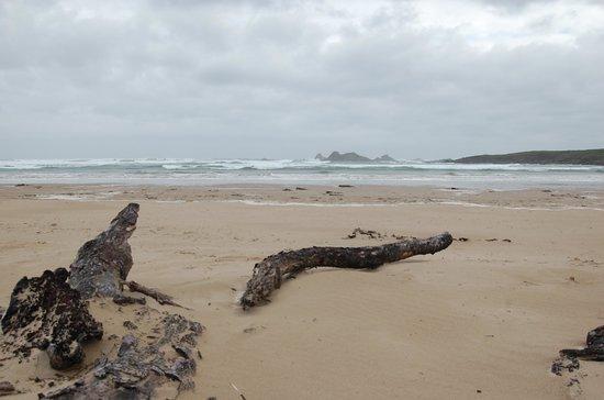 Corinna Wilderness Experience: Beach at Pieman's Heads