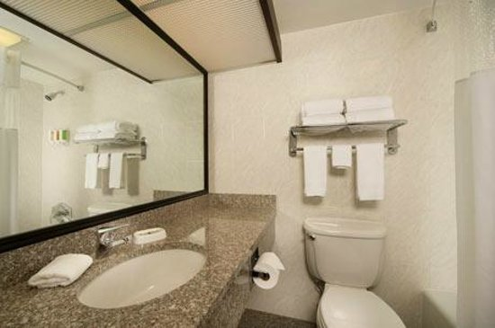 Drury Inn & Suites Fairview Heights: Bathroom