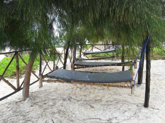 Mohammed's Beach Bungalows: the shade hammocks