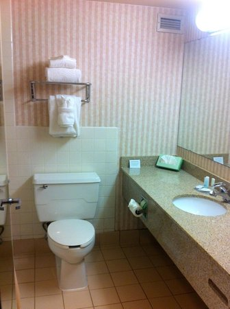Clarion Hotel: Bathroom