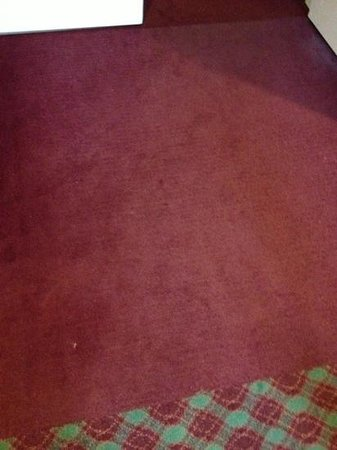 Best Western Plus Hotel & Conference Center: stains on the carpet